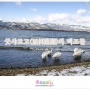 겨울 홋카이도 여행  -...