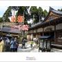 일본 교토 단풍여행 - ...